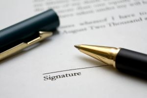 IP Contract